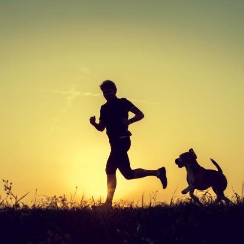Que tal uma companhia para praticar exercícios físicos?